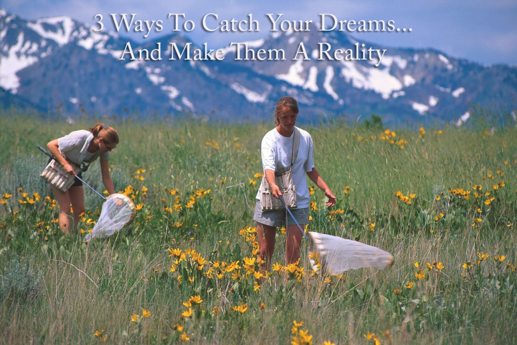 3 Ways to Catch Your Dreams