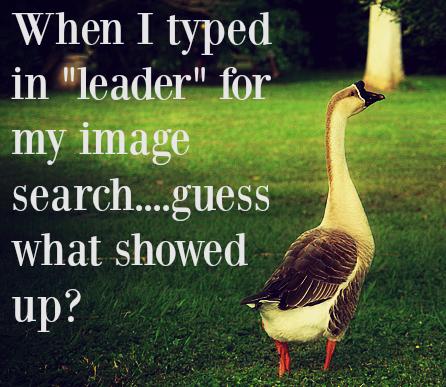 goose_leader