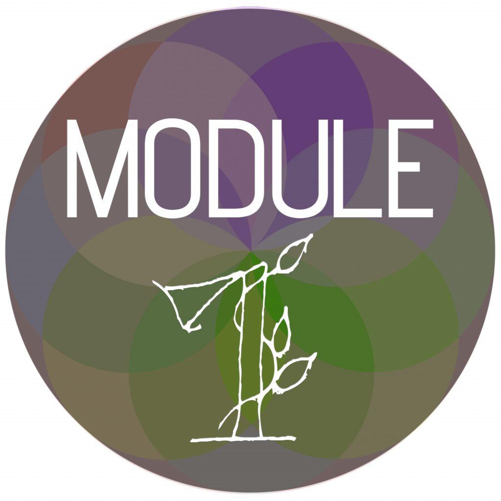 Module Sphere 1