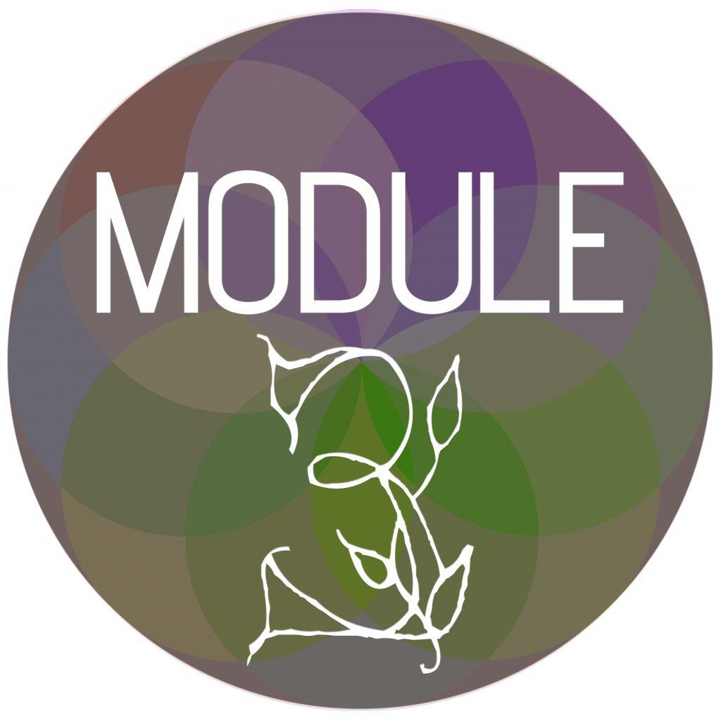 Module Sphere 3