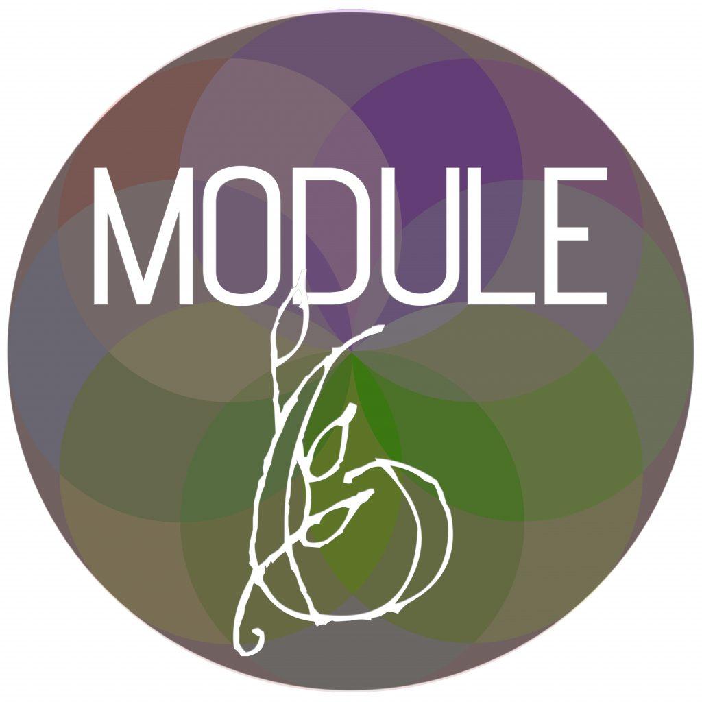 Module Sphere 6