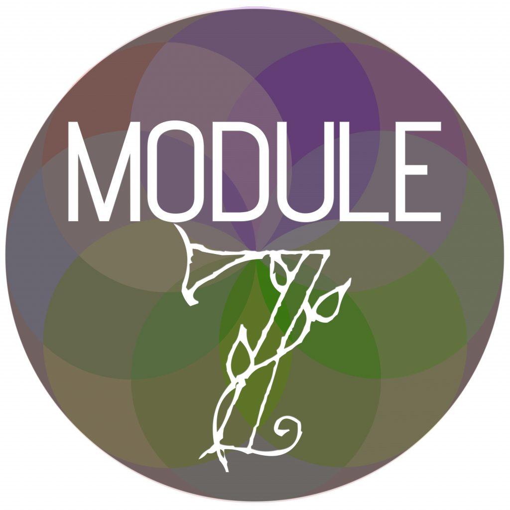 Module Sphere 7
