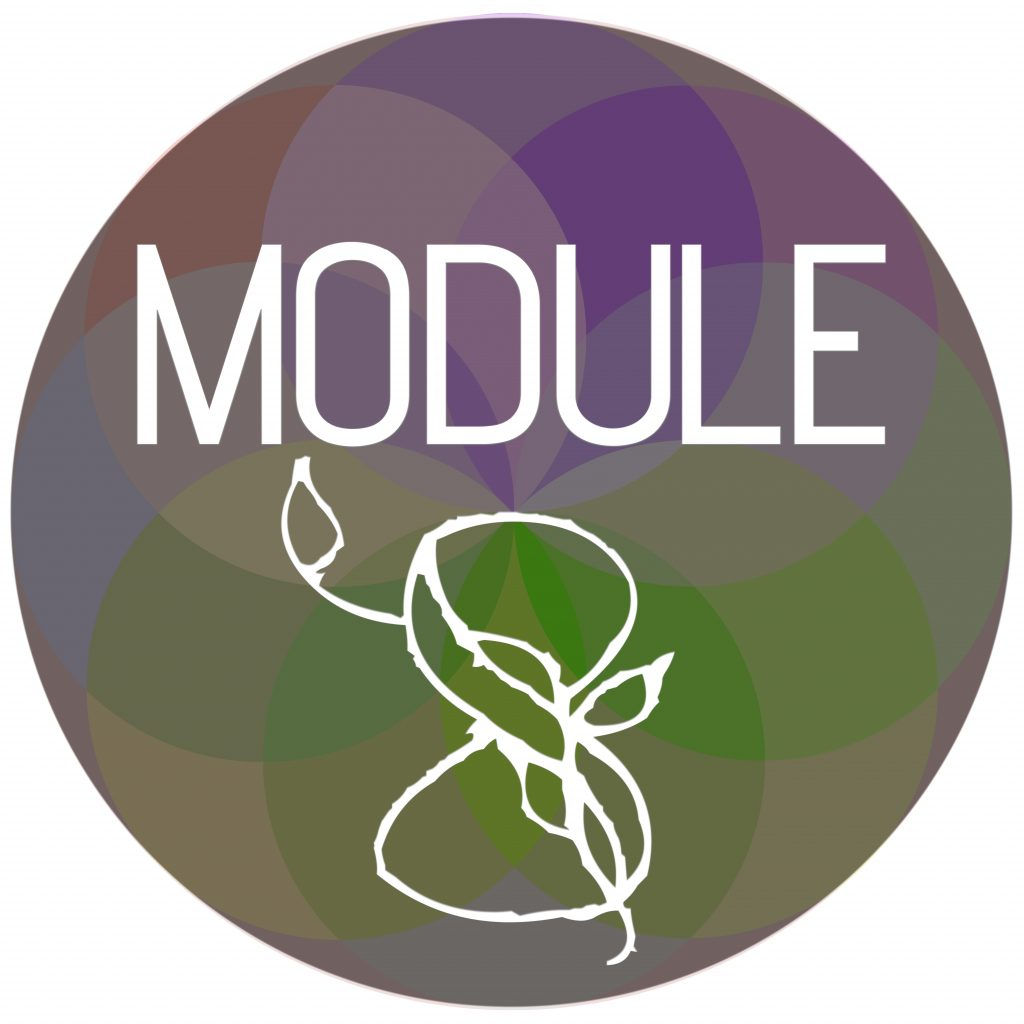 Module Sphere 8