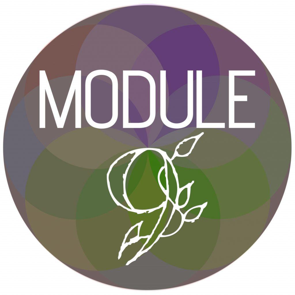 Module Sphere 9